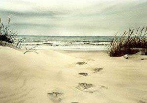 traces_dans_le_sable